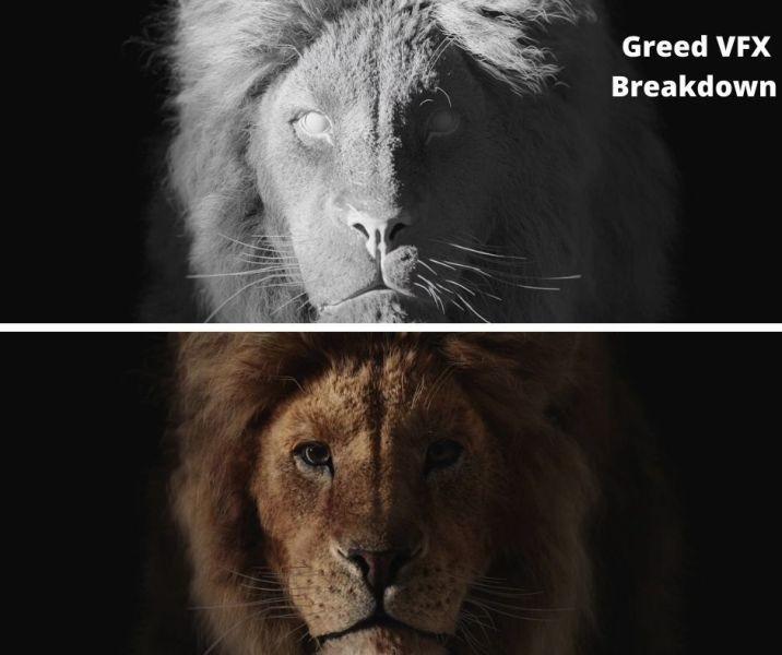 视频解析   2019英国电影《贪婪》中逼真的狮子是如何制作的?