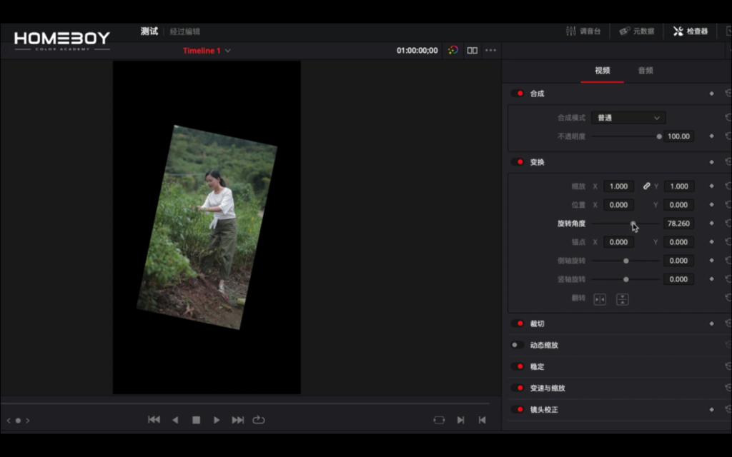 如何将竖屏视频正确导入达芬奇