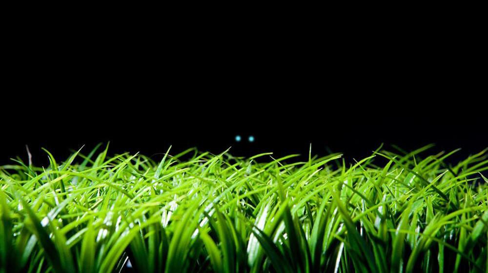【短片】草丛怪物 诡异杀人事件 有声小说你敢看吗?